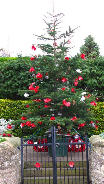 Christmas tree in daylight